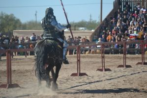 Jousting - 11 by Silver-Stock-Images