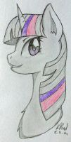 Twilight Sparkle (Commissions Open) by MissiTofu