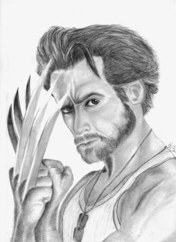 Wolverin by Mojaxe