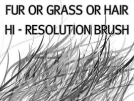 Fur_Grass Or Hair HiRes Brush by deathberry1988