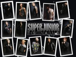 Super Junior Second Album by tothestar14