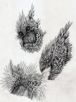 .: Paper Beasts Sketches :. by PrideAlchemist7
