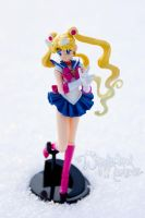 Sailor Moon Figure Maniacs by Sugar-Senshi