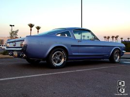 65 Fastback by Swanee3