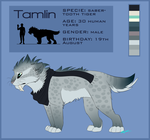 Tamlin reference sheet -2015- by GoldenNove
