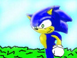 my first animated sonic by alchybear