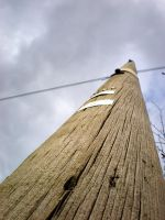 Telephone Pole by Naaancy