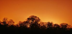 Skyline silhouette by MatthewHoughton