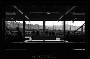 The Back Bridge by leventste