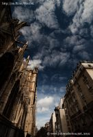 Notre Dame de Paris, Paris, France by Johnmckenna