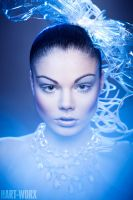 blue plastic by Hart-Worx