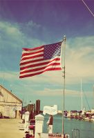 United States by filipecopi