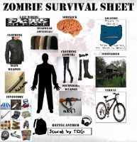 Zombie Survival Template by Lightfoot138