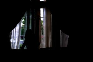 Window Silhouette 4 by IllusionsGlade