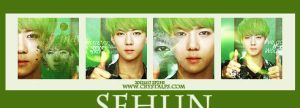 Sehun icon by Spzhi