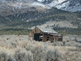 Old building, Cherry Creek, Nevada by Raptorguy14