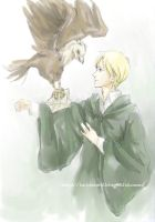 Draco and his bird by luthienelf
