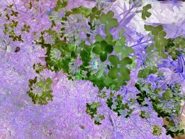 purple leaves, green flowers by blackeststar14