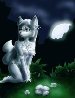 The forest by shiroiwolf
