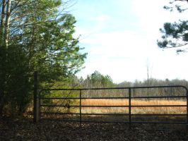 Gate and Field - Stock by Desperation-Stock