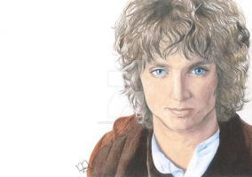 Mister Baggins by DarkShadow15