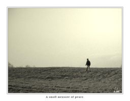 A small measure of peace. by NEME5IS