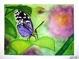 Butterfly - purple by MalinPihl