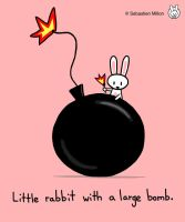 Little Rabbit with Large Bomb by sebreg