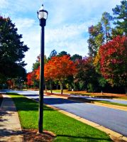 Lamp Post by fatgurl06