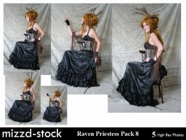 Raven Priestess Pack 8 by mizzd-stock