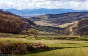 Kaiserstuhl with Vosges Mountains by EyeOfTheKat