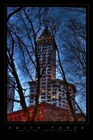 Smith Tower by UrbanRural-Photo