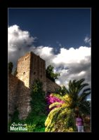 Alcazaba Fortress by Morillas