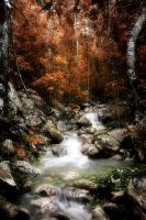 Autumn Rivulet by Questavia