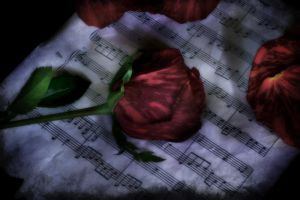 For the love of Music by firesign24-7