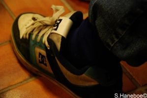 The DC shoe by haneboe