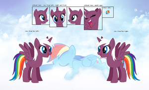 Reference sheet - Rainbow Flash by Derpyna