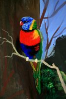 Lorikeet by Animecowboy