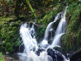 oregon waterfall 3 by Alegion-stock