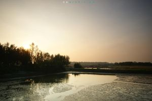 Color of The Morning 91 by dearchivism