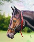 Horse and Tack by NorthumbrianArtist