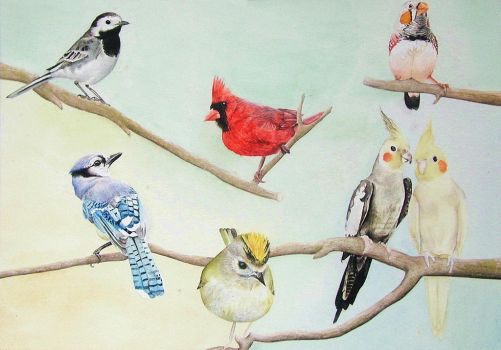 Watercolour birds by L-i-n-d-s