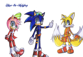 Sonic Riders by Libra-the-Hedghog