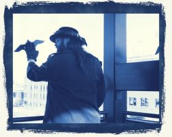 Quite the View 6 Cyanotype by Windthin