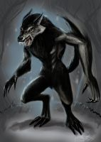 Werewolf by MeLiNaHTheMixed