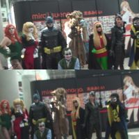 Cosplays from Batman series at Anime Expo 2013 by trivto