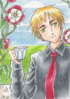 APH - England -art card- by sammich