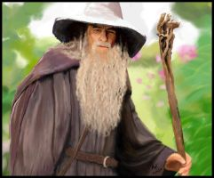 Gandalf in the Shire by miri-k