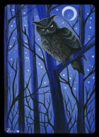 Owl of Fairyland by Crowtesque