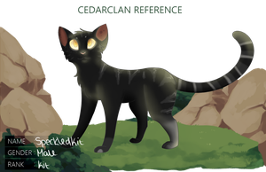 [CC] Speckledkit by Solaeris